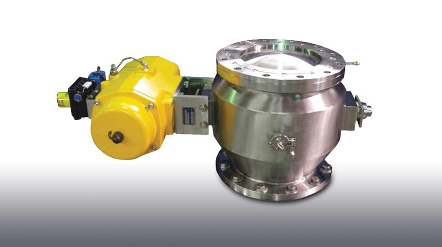 p21 valve